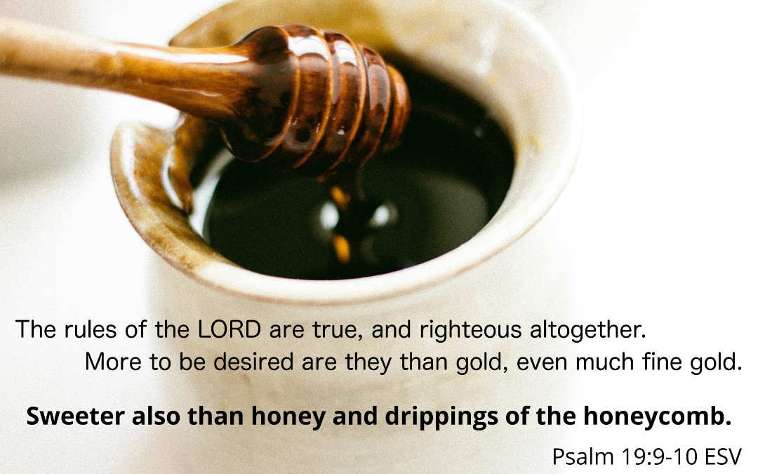 The Law's Lesson: Desire God in his Holiness (Psalm 19:7-11)