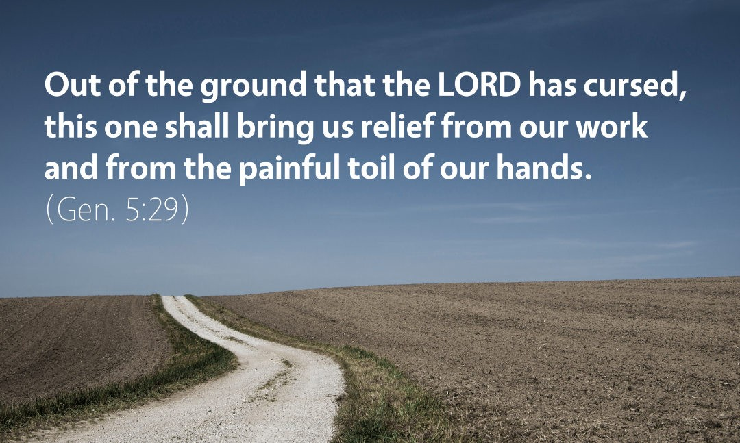 Genesis 5: Out of the Ground that the Lord has Cursed