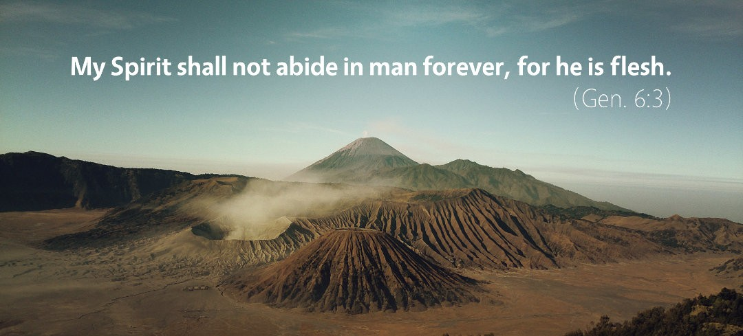 Genesis 6: My Spirit Shall Not Abide in Man Forever