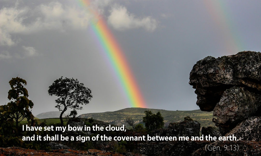 Genesis 9–10: I Have Set My Bow