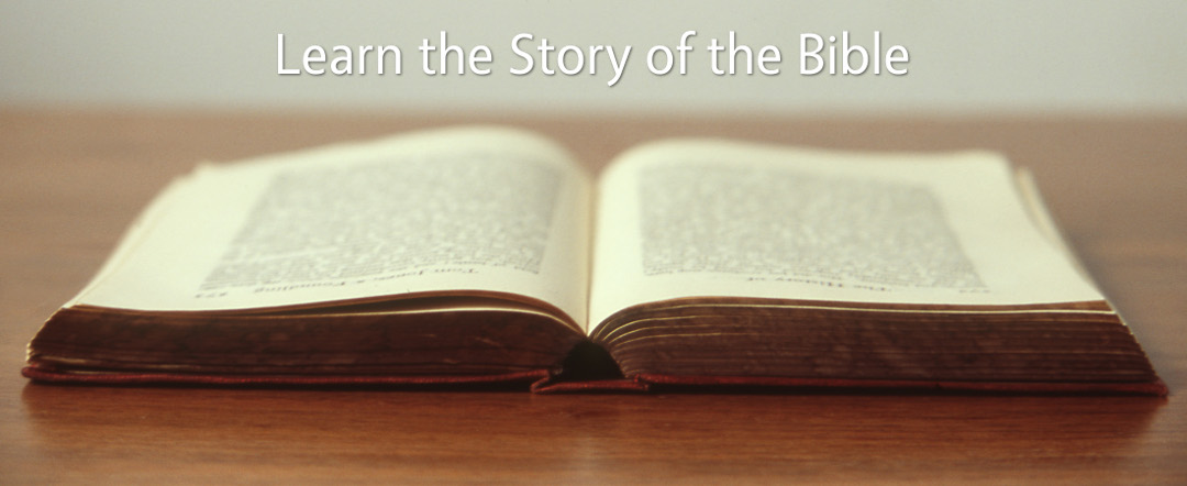 Learn the Story of the Bible