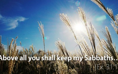 March 20th: Bible Meditation for Exodus 31