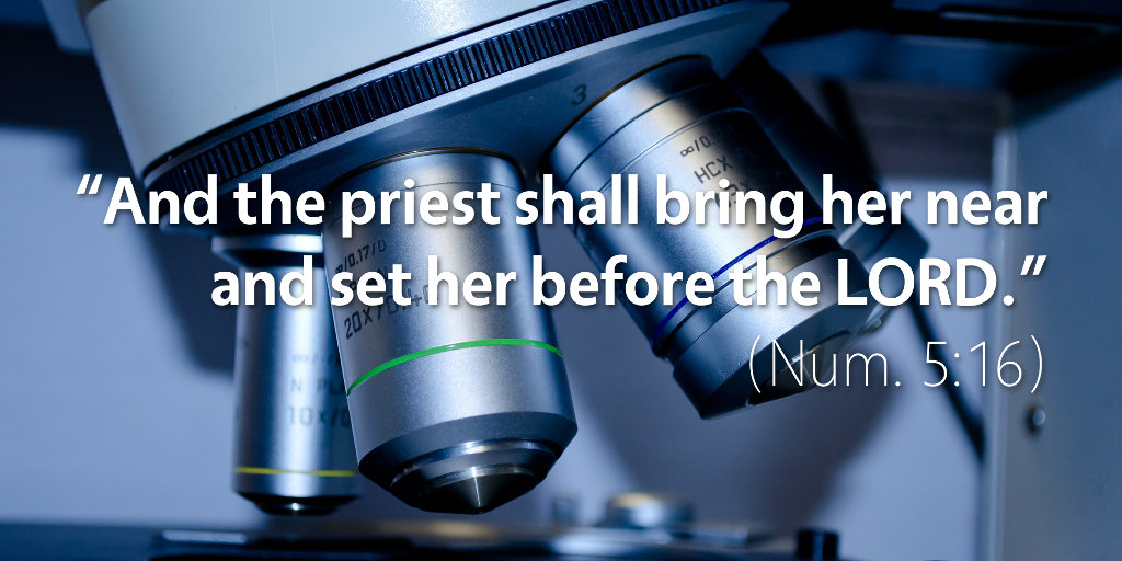 Numbers 5: And the priest shall bring her near and set her before the LORD.