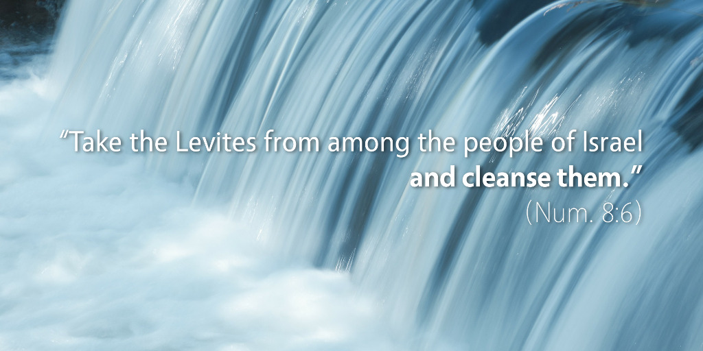 Numbers 8: Take the Levites from among the people of Israel and cleanse them.
