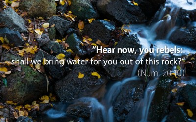 May 11th: Bible Meditation for Numbers 20