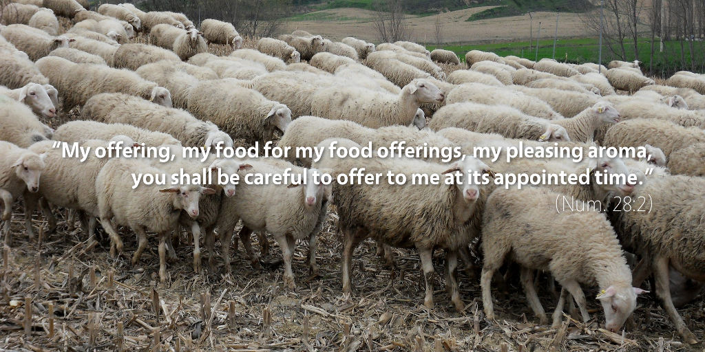 Numbers 28: My offering, my food for my food offerings, my pleasing aroma you shall be careful to offer to me at its appointed time.