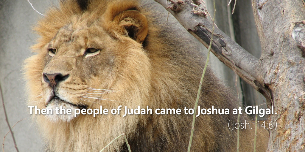 Joshua 14–15: Then the people of Judah came to Joshua at Gilgal.