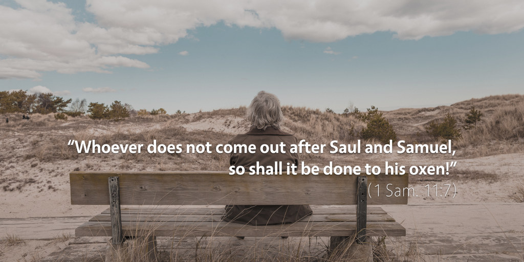 1 Samuel 11: Whoever does not come out after Saul and Samuel so shall it be done to his oxen.