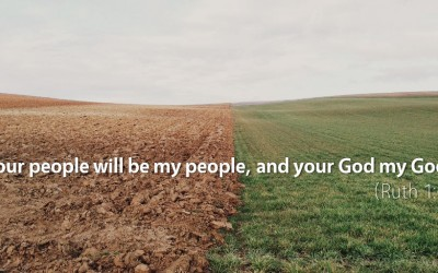 August 8th: Bible Meditation for Ruth 1