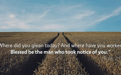 August 9th: Bible Meditation for Ruth 2