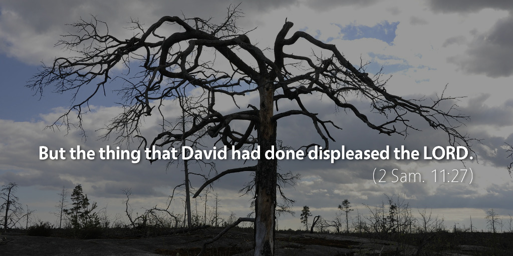 2 Samuel 11: But the thing that David had done displeased the LORD.