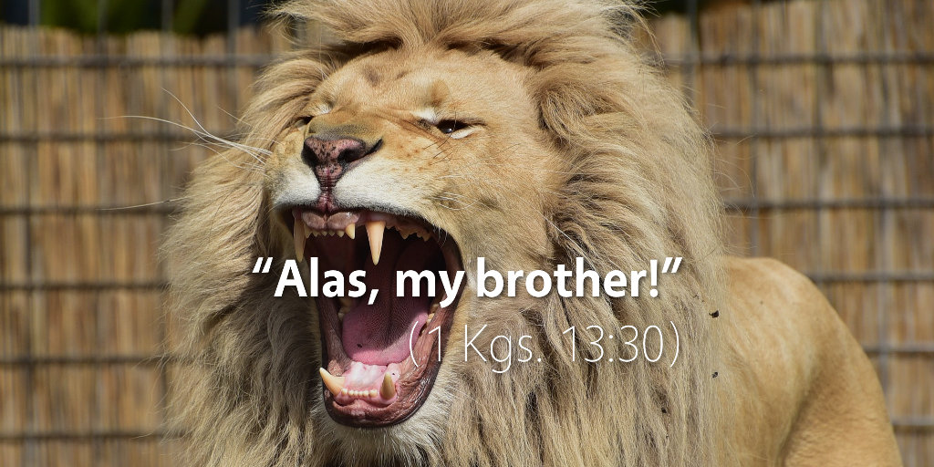 1 Kings 13: Alas, my brother!