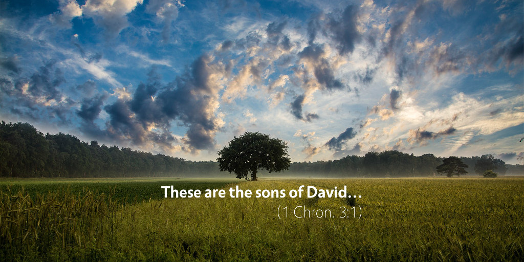 1 Chronicles 3: These are the sons of David...
