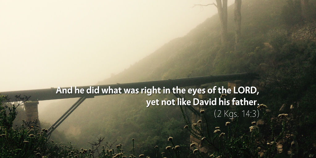 2 Kings 14: And he did what was right in the eyes of the LORD, yet not like David his father.